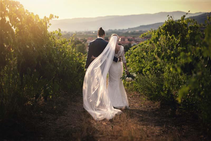 Brudepar går i vinrankerne