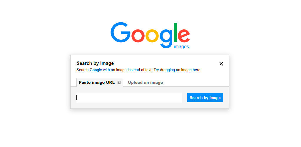 Google Image Search box
